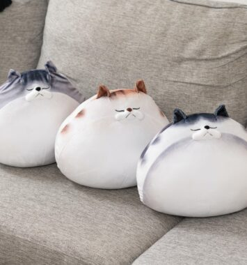 kattepuder